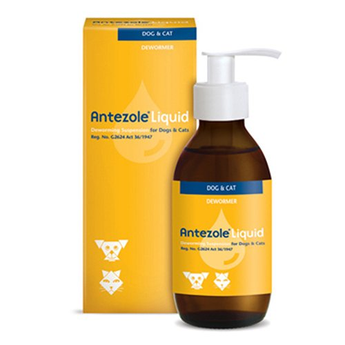 Antezole Liquid  for Cats