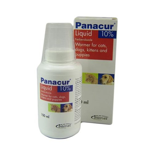 Panacur Oral Suspension for Cats